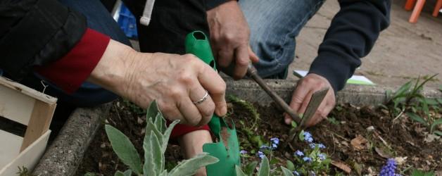 De l'assiette à la graine : tous au jardin !