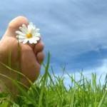 Congés de printemps